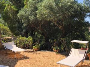 Villa Mariza, Villen  Scopello - big - 4