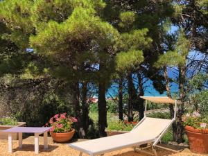 Villa Mariza, Vily  Scopello - big - 33
