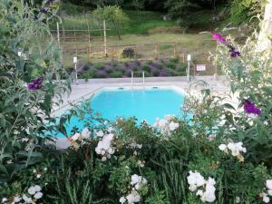 Alle Vignole, Bed and Breakfasts  Coreglia Antelminelli - big - 25