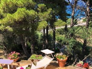 Villa Mariza, Villen  Scopello - big - 35