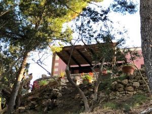 Villa Mariza, Vily  Scopello - big - 38