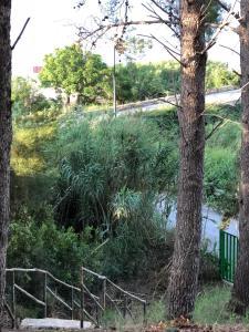 Villa Mariza, Villen  Scopello - big - 39