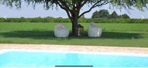 Residenza Cantalupo - AbcAlberghi.com