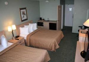Executive Queen Room with Sofa Bed - Non-Smoking