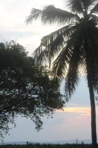 The Lake Panorama Holiday Villa, Villas  Polonnaruwa - big - 58