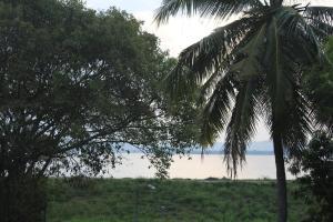 The Lake Panorama Holiday Villa, Villas  Polonnaruwa - big - 70
