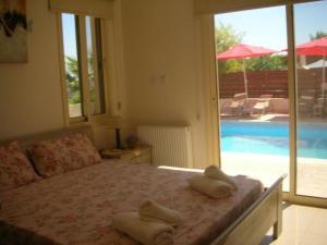 Villa Chrisanthos, Виллы  Писсури - big - 8