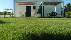 Giardino D'Oriente, Guest houses  Otranto - big - 19