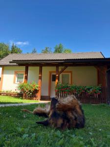 Rooms Family Glumac, Гостевые дома  Езерца - big - 77