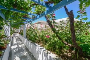 Hotel Anixis, Hotely  Naxos Chora - big - 45