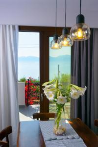 Villa Olga, Vily  Agios Nikolaos - big - 63