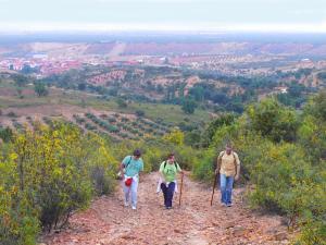 Casa rural El Pinche, Дома для отпуска  Espinoso del Rey - big - 19
