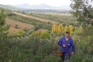 Casa rural El Pinche, Дома для отпуска  Espinoso del Rey - big - 22