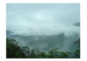 Mountain Facing Rooms in Shimla