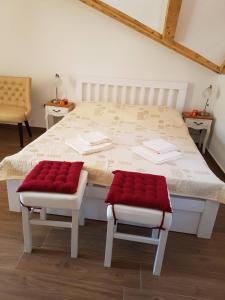 Apartment Peranovic 2, Apartmány  Kotor - big - 36