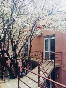 Tiflis Patio Guest House, Vendégházak  Tbiliszi - big - 43