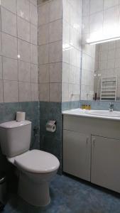 TES Flora Apartments, Apartments  Borovets - big - 167