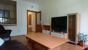 TES Flora Apartments, Apartments  Borovets - big - 171
