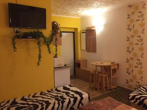 Studio with Terrace and Air Conditioning (4 Adults)
