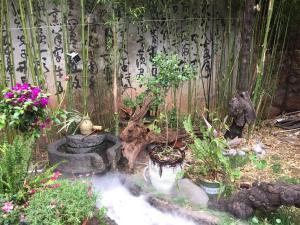 Lijiang Shuhe Qingtao Inn, Penziony  Lijiang - big - 129