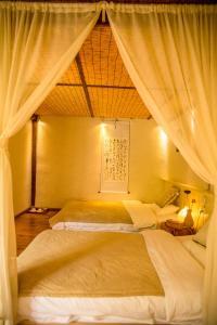Lijiang Shuhe Qingtao Inn, Guest houses  Lijiang - big - 42