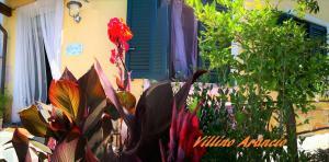 villino Arancio, Case vacanze  Massarosa - big - 8