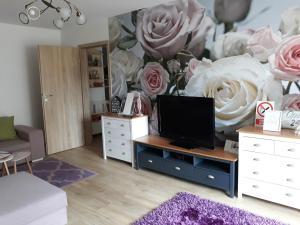 Sweet Garden Residence, Apartmány  Brašov - big - 61