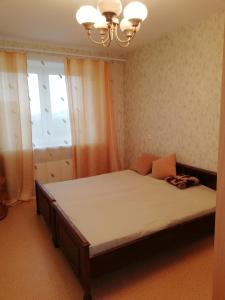 Apartanent on Chkalova, Apartmány  Nizhny Novgorod - big - 26
