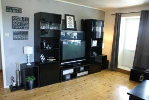 Solferie Holiday Home- Gullveien, Apartmány  Kristiansand - big - 45