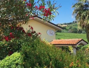 Il Vigneto Country House - AbcAlberghi.com