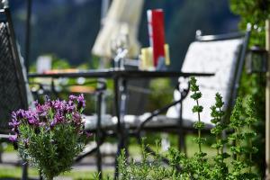 Hotel Spinne Grindelwald, Szállodák  Grindelwald - big - 68