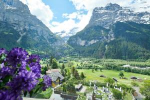Hotel Spinne Grindelwald, Hotels  Grindelwald - big - 51
