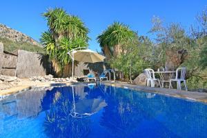 Casas Rurales Los Algarrobales, Resorts  El Gastor - big - 15