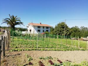 Agroturismo Pagoederraga, Farmy  Orio - big - 68