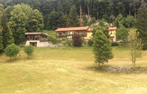 The Laz Estate
