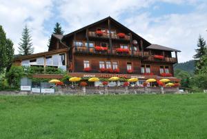 Hotel Rothorn, Отели  Schwanden - big - 62