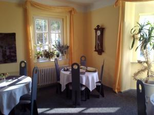 Pension Baron Schoeneck, Guest houses  Karlovy Vary - big - 8
