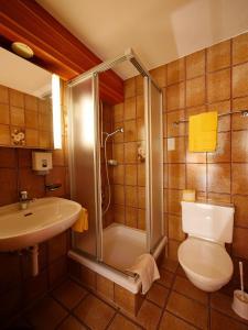 Hotel Alpenblick, Отели  Ценегген - big - 14