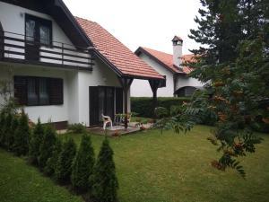 Vila Borovic