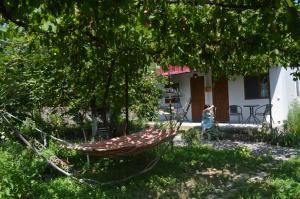 Ludwig Guesthouse, Penziony  Lagodekhi - big - 47