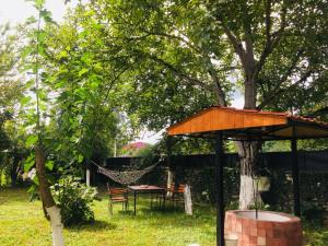Lazuri Keria Family Guesthouse, Penziony  Khoni - big - 43