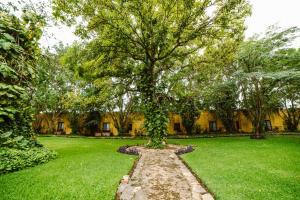 Hacienda Misné, Hotely  Mérida - big - 54
