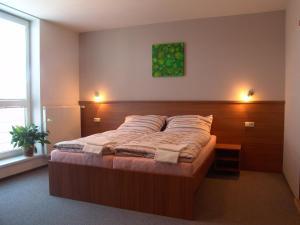Penzion Ruland, Affittacamere  Brno - big - 2