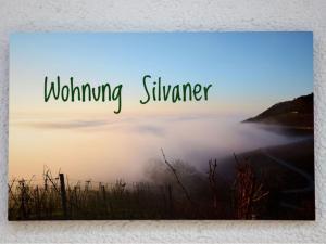 Winzerhof Düring, Гостевые дома  Ипхофен - big - 16