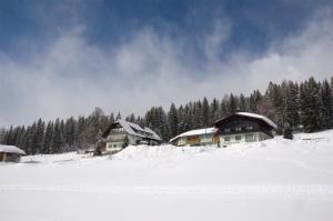 Hotel Tischlbergerhof, Hotely  Ramsau am Dachstein - big - 36