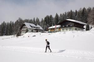 Hotel Tischlbergerhof, Hotely  Ramsau am Dachstein - big - 1