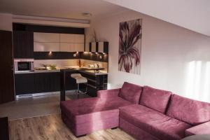 Aparthotel Borovets Gardens, Aparthotely  Borovets - big - 12