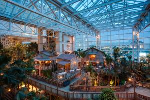 Gaylord Palms Resort & Convention Center (6 of 38)