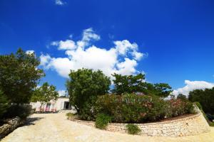 Trulli Alleria, Holiday homes  Ostuni - big - 7