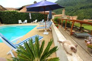 Le Jardin de la Sals (Ecluse au Soleil), Bed & Breakfasts  Sougraigne - big - 49